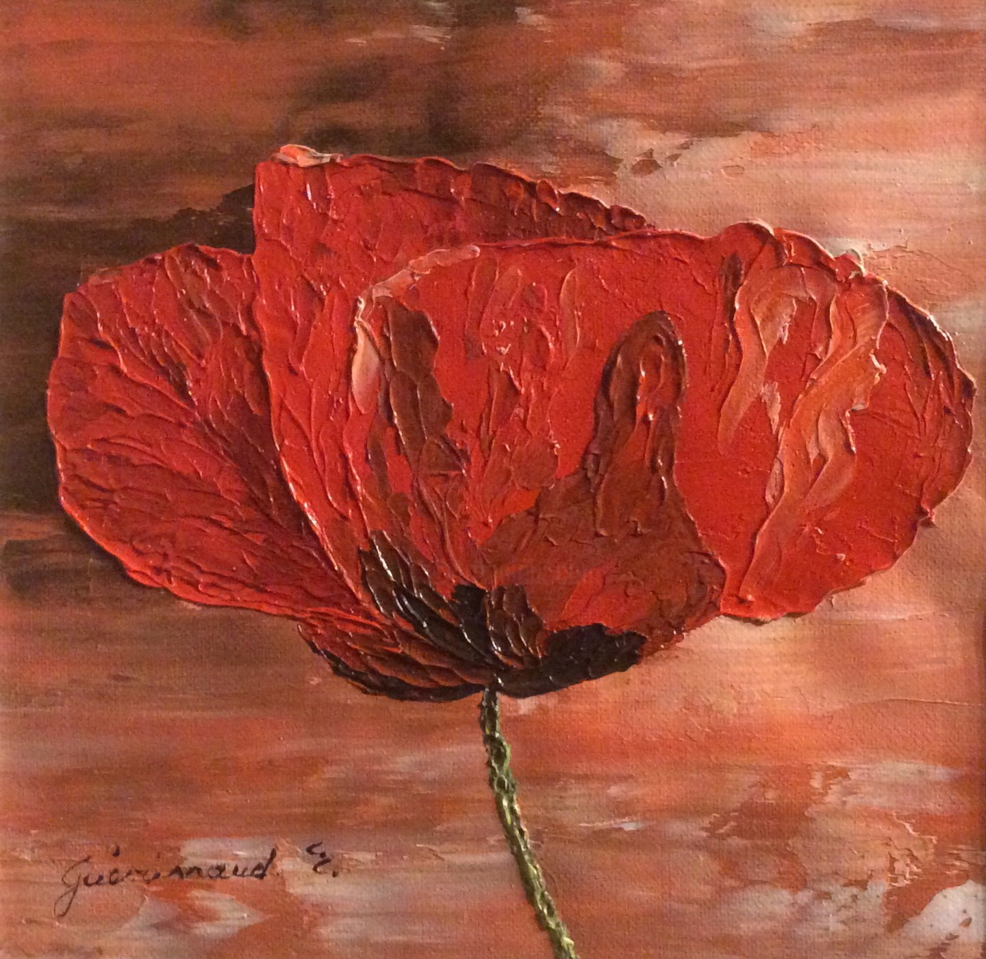 Etienne Guérinaud - Coquelicot rouge (5)