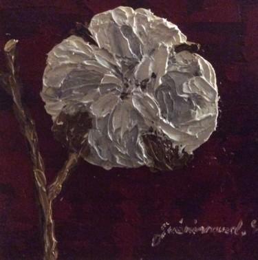 Fleur de coton (5)