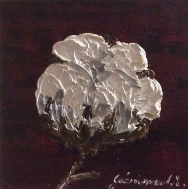 Fleur de coton (6)